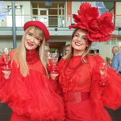 lady's in red boeken