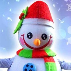 sammie de sneeuwpop boeken