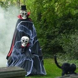 the skeletons boeken