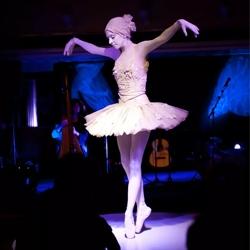 de ballerina boeken