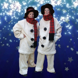 het te gekke sneeuwpoppen team boeken