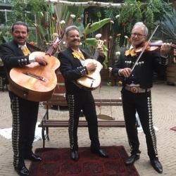 mariachi serenata mexicana boeken