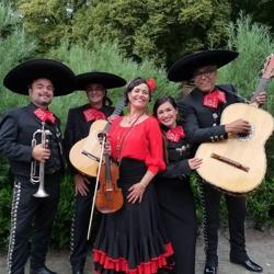 mariachi sol y luna boeken