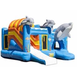speel en springkussen de dolfijn huren