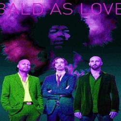 bald as love jimi hendrix tribute boeken